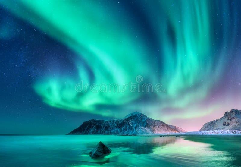 Aurora Borealis Lumières du nord dans des îles de Lofoten, Norvège image libre de droits