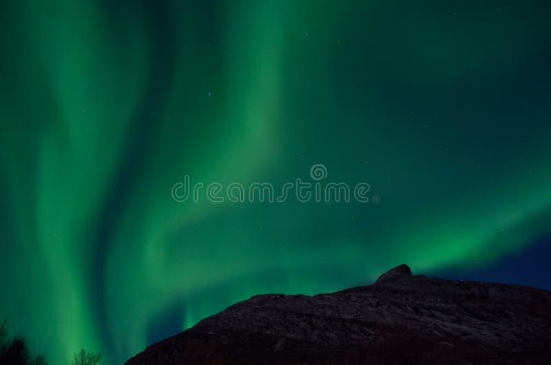 Aurora borealis massif dansant sur le ciel nocturne au-dessus de la montagne en Norvège du nord photo stock