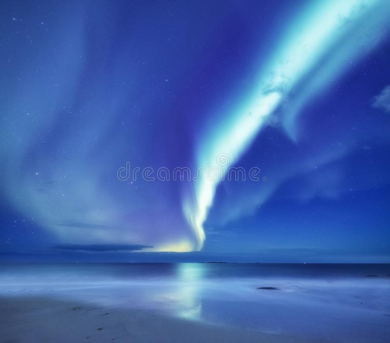 Aurora borealis nas ilhas de Lofoten, Noruega Aurora boreal verde acima do oceano Céu noturno com luzes polares Terras do inverno fotos de stock
