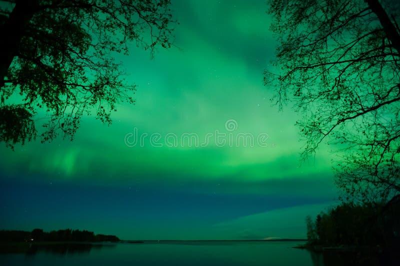 Aurora Borealis, Noordelijke Lichten, in Finland royalty-vrije stock afbeeldingen