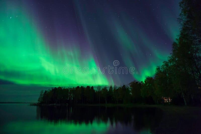 Aurora Borealis nordliga ljus, i Finland arkivbild