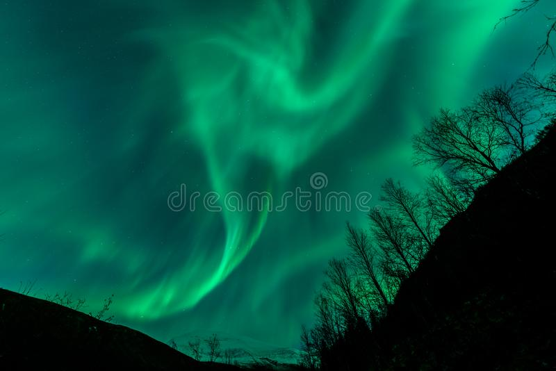 Aurora Borealis North Norway Tromsdalstinden stock photo