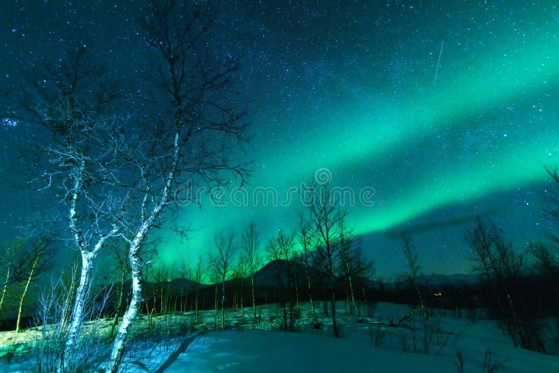 Aurora Borealis Northen ilumina o fenômeno imagens de stock royalty free