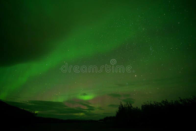 Aurora Borealis Northern-lichten stock afbeelding