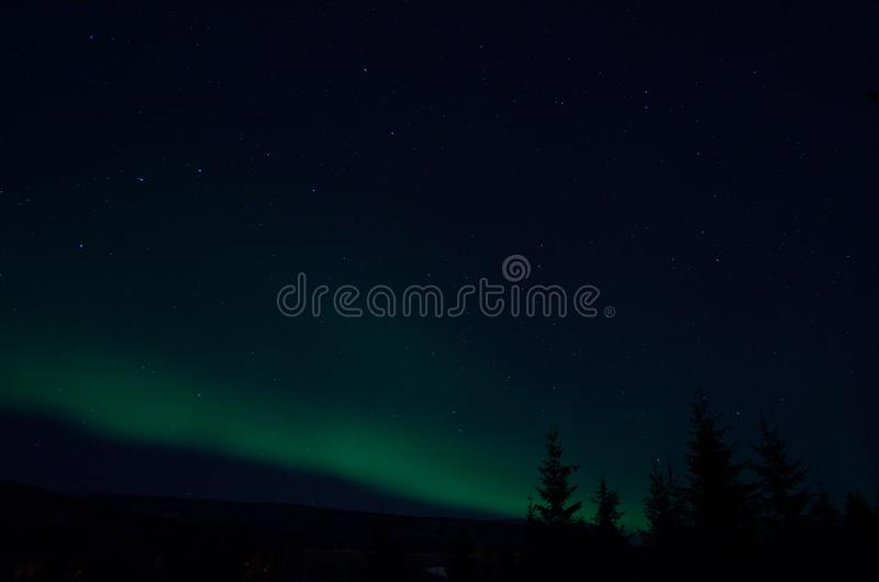 Aurora borealis northern light on winter night sky over trees royalty free stock images