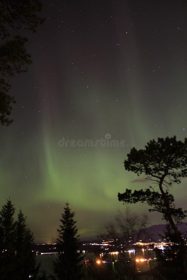 Aurora borealis royalty free stock images