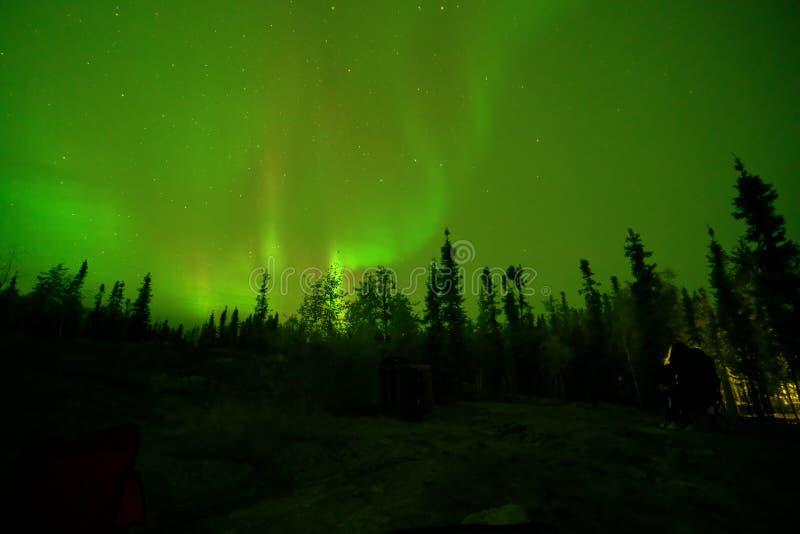 Aurora borealis o luces boreales observadas en Yellowcuchillo, Canadá, en agosto de 2019 imágenes de archivo libres de regalías