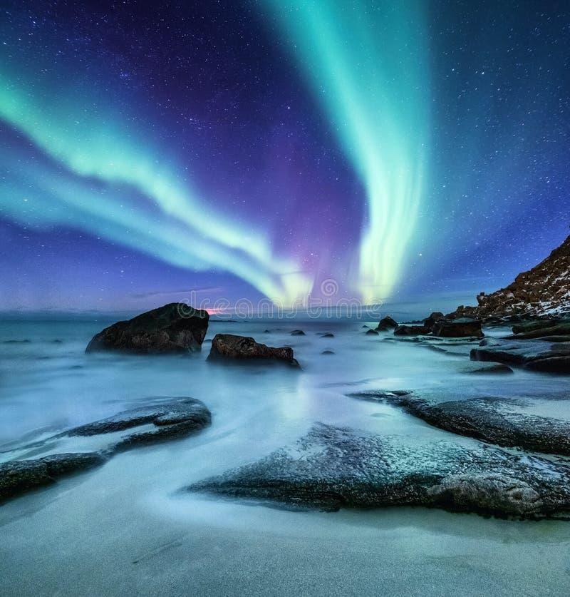 Aurora borealis op de Lofoten-eilanden, Noorwegen Groene noordelijke lichten boven oceaankust Nachthemel met polaire lichten De n stock foto's