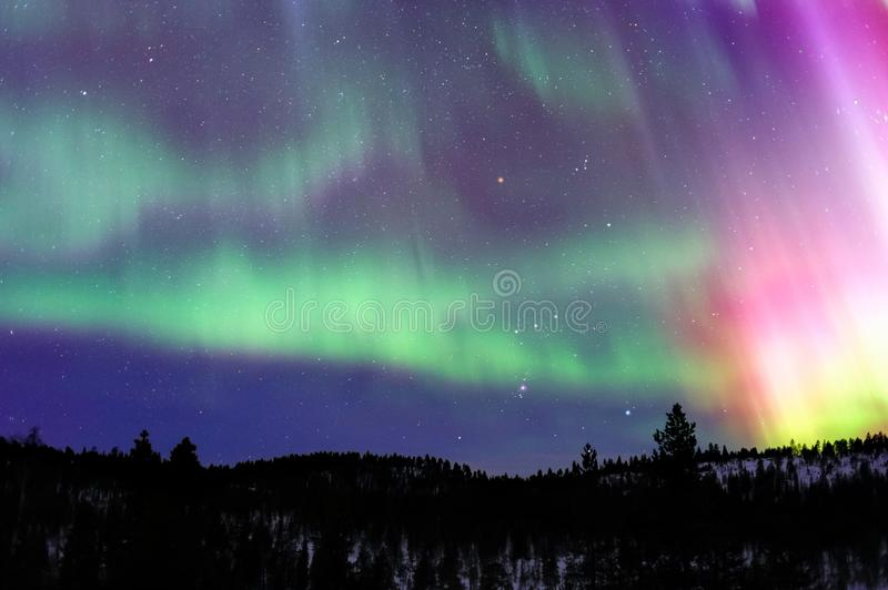 Aurora Borealis, Northern lights in winter night sky. Aurora Borealis and Orion constellation over northern Taiga in Finnish Lapland royalty free stock photo