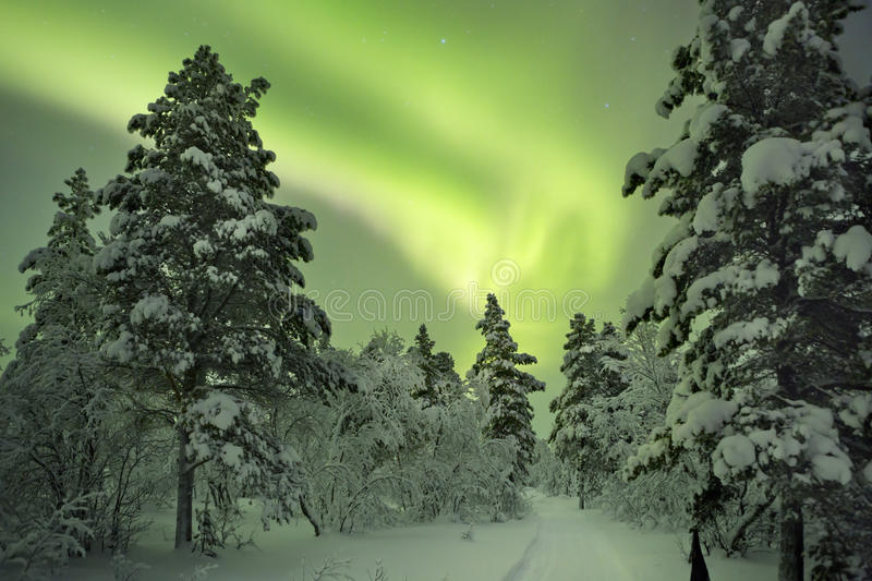 Aurora borealis over a path through winter landscape, Finnish La royalty free stock photo