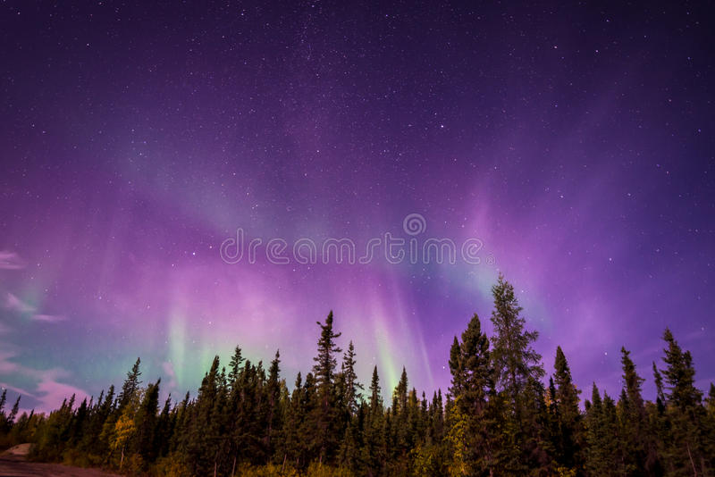 Aurora Borealis over Yellowknife, NT stock foto's