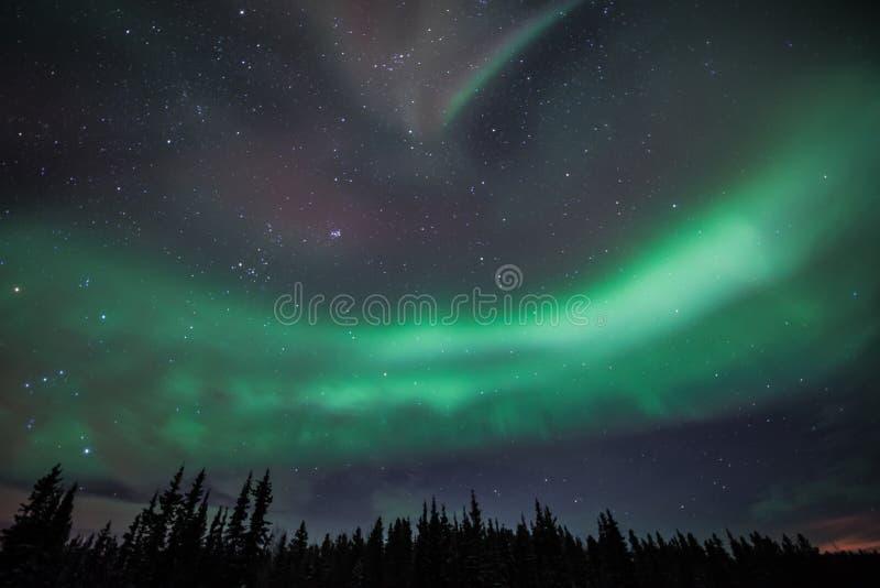 Aurora borealis royalty free stock image
