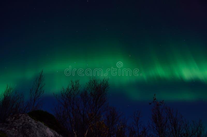 Aurora borealis poderoso que dança no céu noturno atrasado do outono fotos de stock royalty free