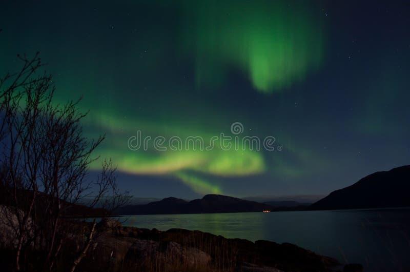 Aurora borealis poderoso que dança no céu noturno sobre a montanha e a paisagem do fiorde no outono atrasado foto de stock