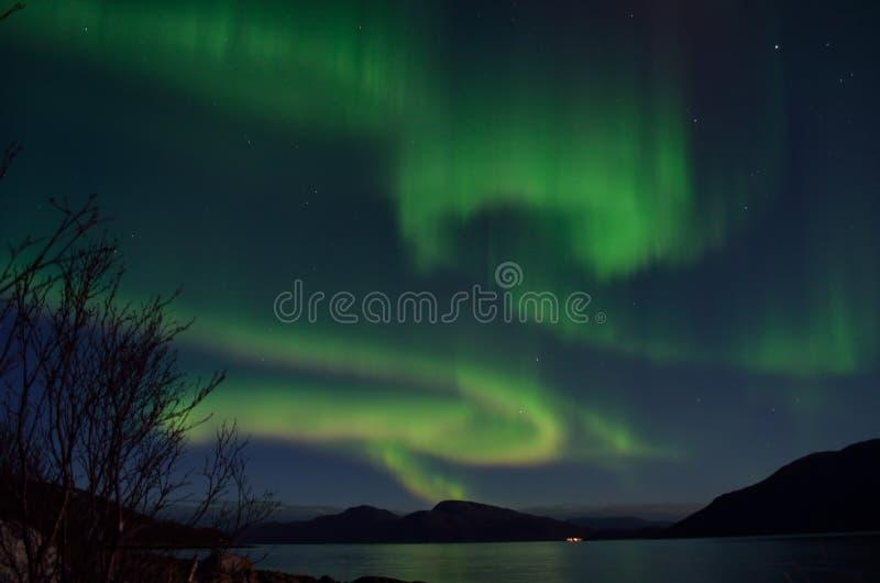 Aurora borealis poderoso que dança no céu noturno sobre a montanha e a paisagem do fiorde no outono atrasado imagem de stock