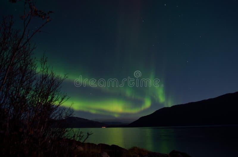 Aurora borealis poderoso que dança no céu noturno sobre a montanha e a paisagem do fiorde no outono atrasado fotos de stock royalty free