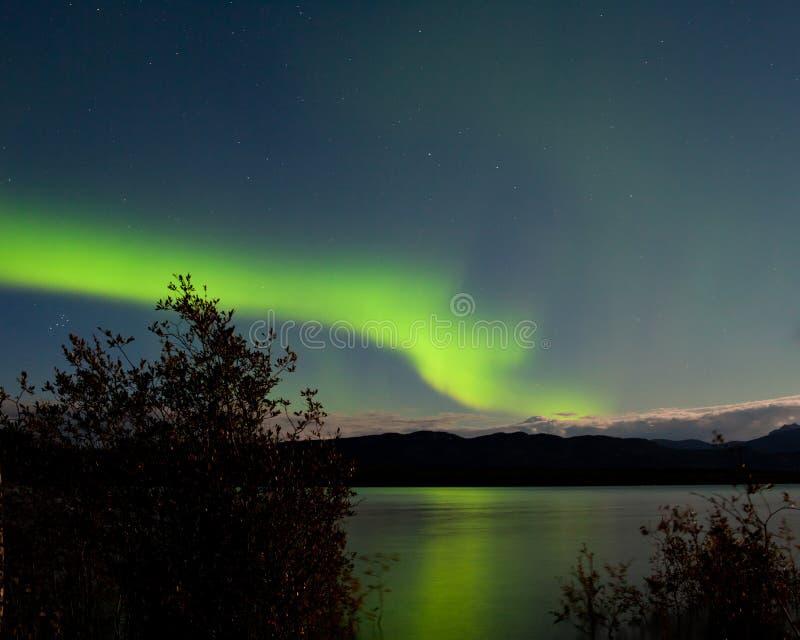 Aurora borealis refletido no lago Laberge Yukon imagem de stock