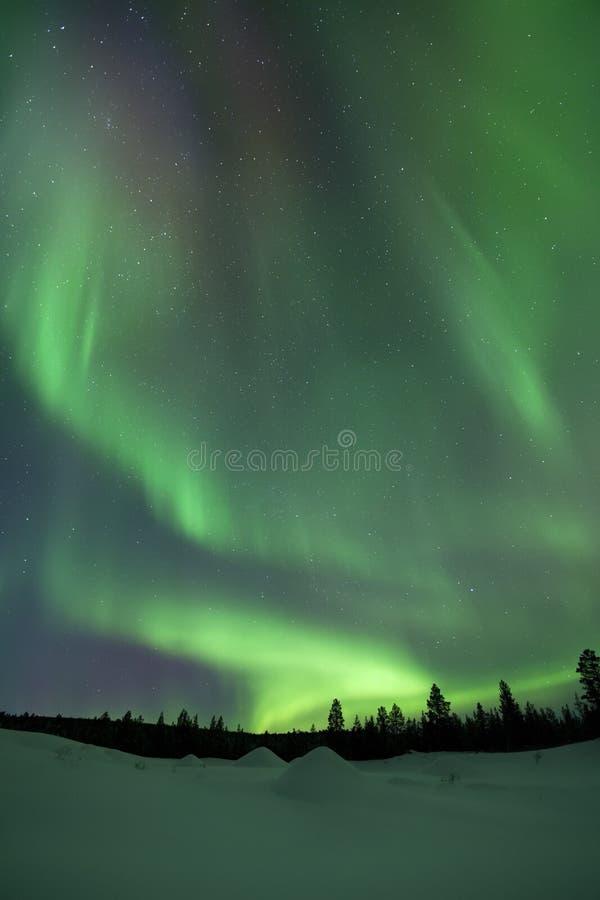 Aurora borealis sobre paisaje nevoso del invierno, Laponia finlandesa fotografía de archivo