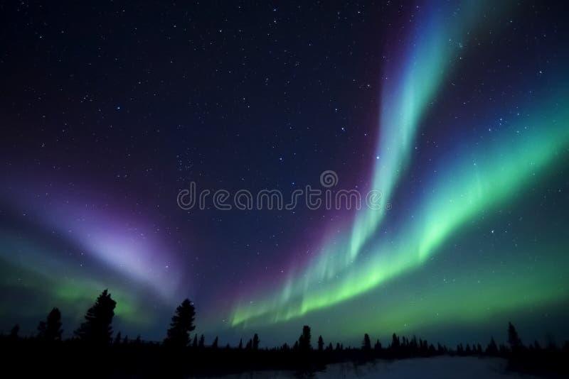 Aurora Borealis sopra la tundra fotografia stock
