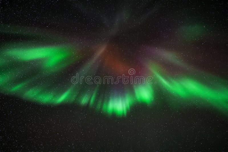 Aurora Borealis sopra Reykjavik fotografie stock libere da diritti