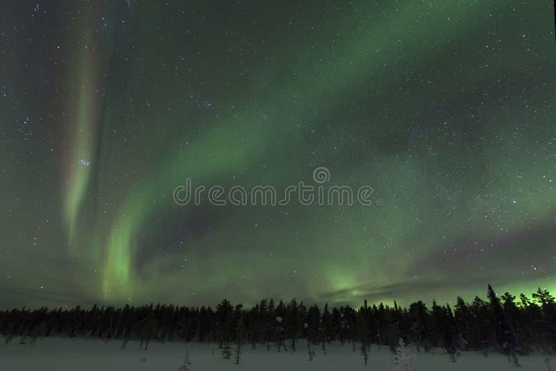 Aurora borealis spectaculaire (lumières du nord) images libres de droits