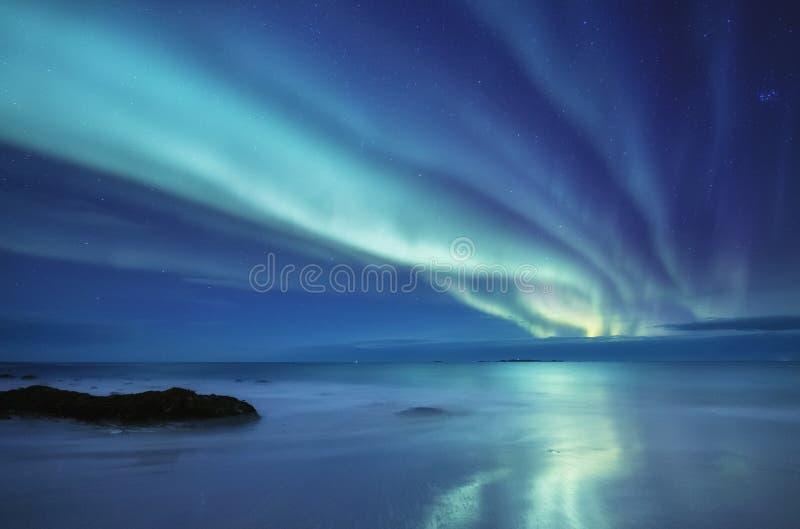 Aurora borealis sur les îles de Lofoten, Norvège Lumières du nord vertes au-dessus des montagnes Ciel nocturne avec les lumières  image libre de droits