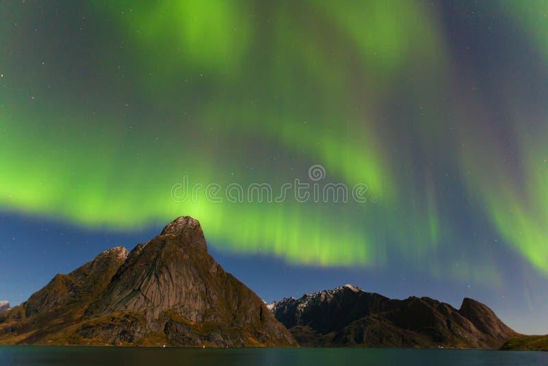 Aurora Borealis sur les ?les de Lofoten, Reine Norway Lumi?res du nord vertes au-dessus des montagnes Ciel nocturne avec le ciel  image libre de droits