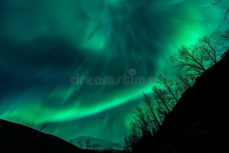 Aurora Borealis - Tromso stock photos