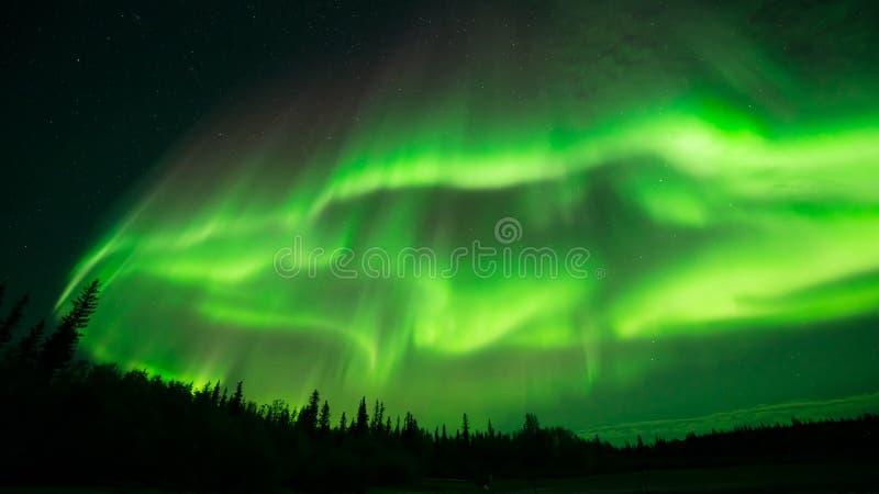 Aurora Cloud royaltyfri bild