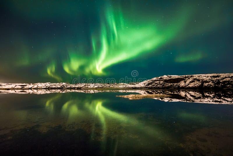 Aurora dragon. royalty free stock photography