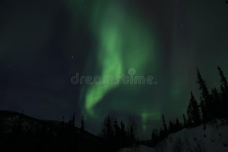 Aurora em Alaska fotos de stock royalty free