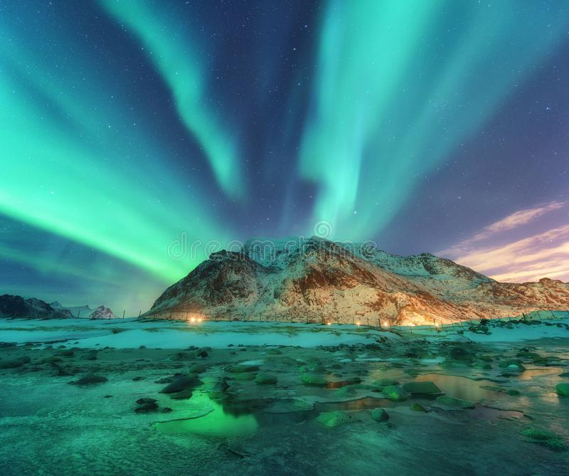 aurora Noordelijke lichten in Lofoten-eilanden, Noorwegen stock afbeelding