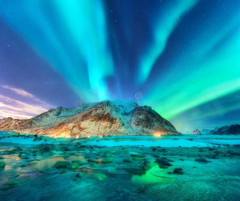 aurora Noordelijke lichten in Lofoten-eilanden, Noorwegen royalty-vrije stock fotografie