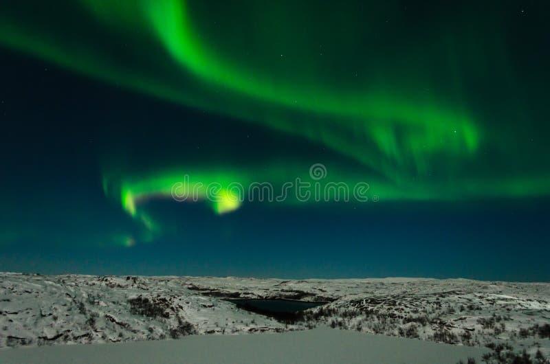 Aurora, northern lights, night, tundra in winter. Aurora, northern lights night tundra in winter.Horizontal royalty free stock image