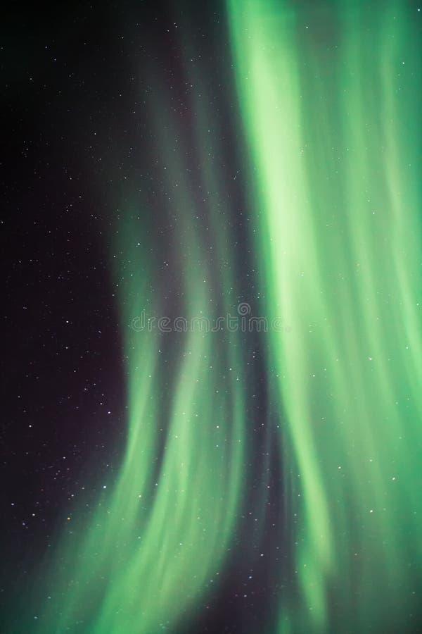 Aurora over Lofoten, Norway royalty free stock photos