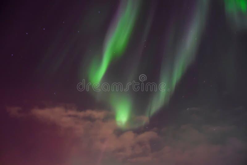 Aurora Sky Background arkivbild