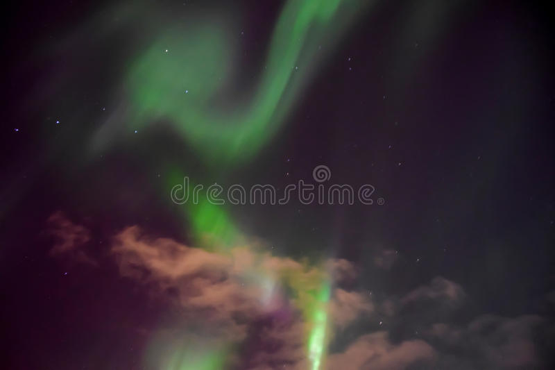 Aurora Sky Background. Background pattern of the northern lights purple sky and clouds Big Dipper