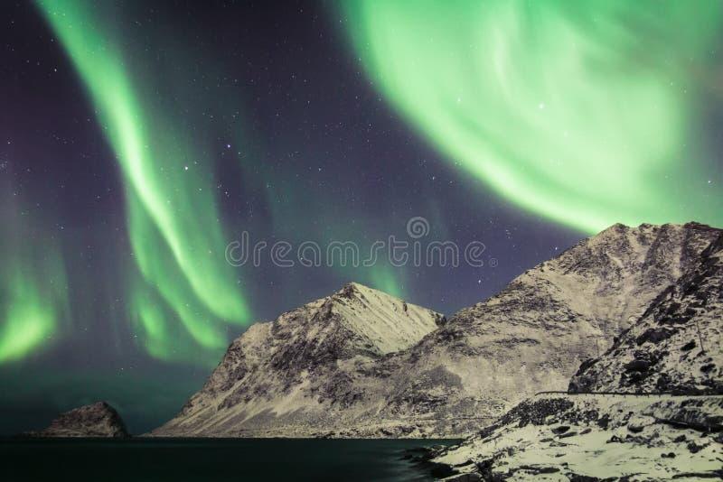 Aurora sopra Lofoten, Norvegia immagini stock libere da diritti