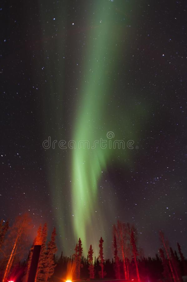 The aurora in the woods of Alaska,USA stock photography
