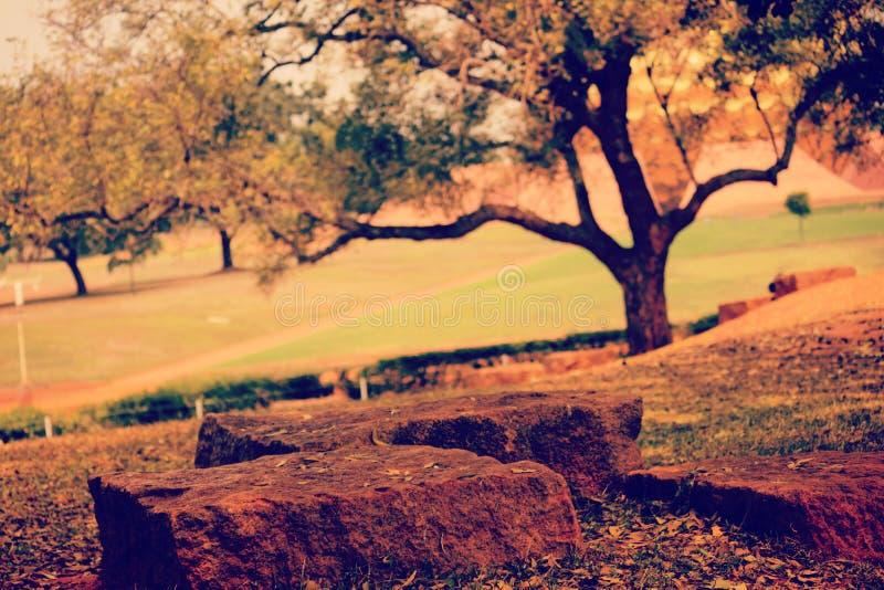 Auroville royaltyfria bilder