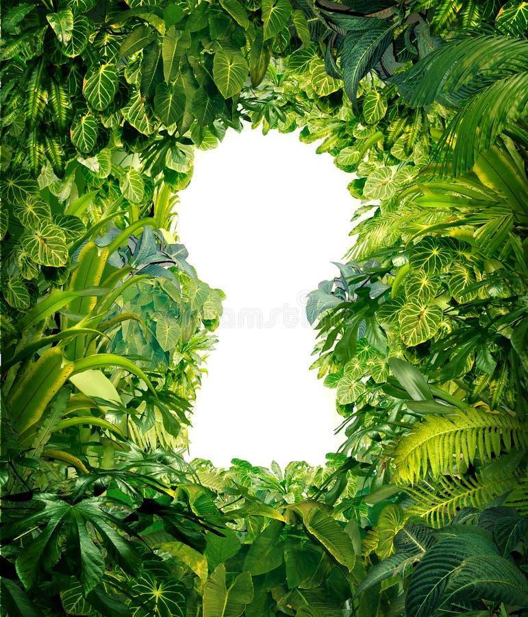 Aus dem Dschungel heraus vektor abbildung