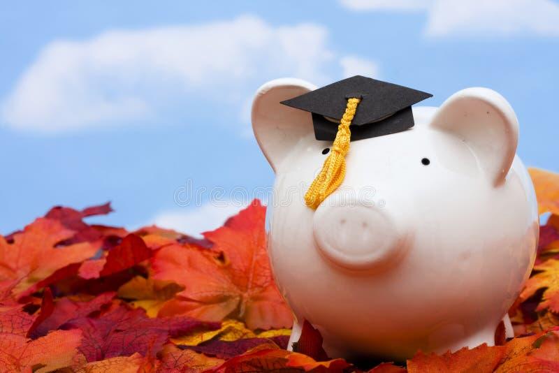 Ausbildungs-Sparungen lizenzfreies stockfoto