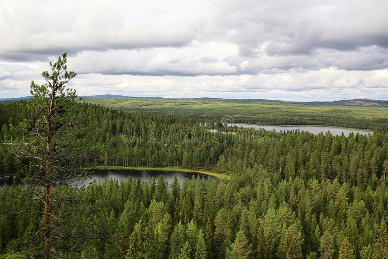 Ausblick aus Kirkberget in Vilhelmina, Vasterbotten, Schweden lizenzfreie stockfotografie