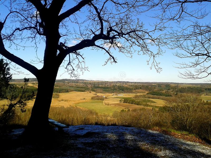 Ausblickpunkt auf dem Hügel im Wald an einem Frühlingstag stockbilder