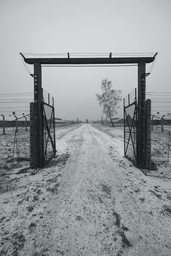 auschwitz χειμώνας birkenau polland στοκ εικόνες με δικαίωμα ελεύθερης χρήσης