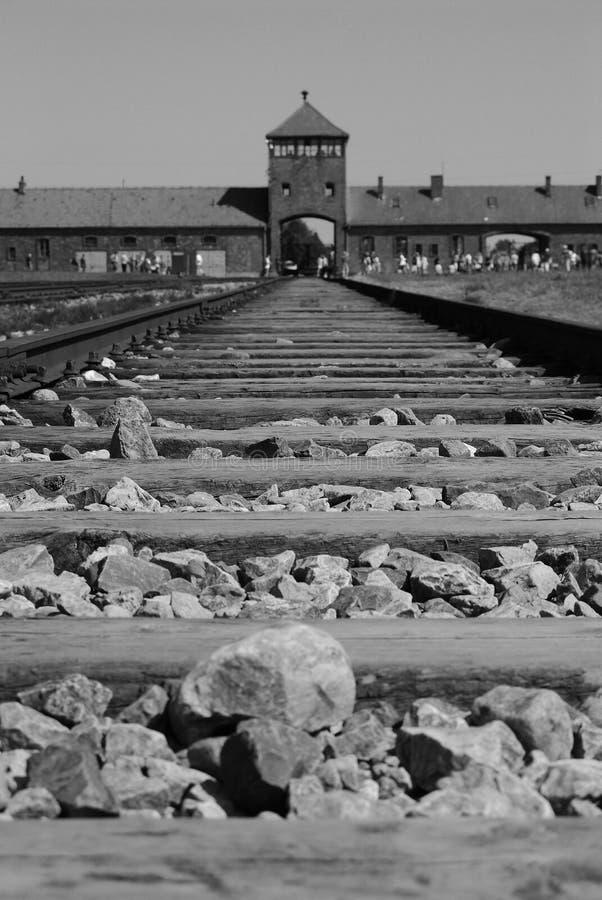 Auschwitz   image stock
