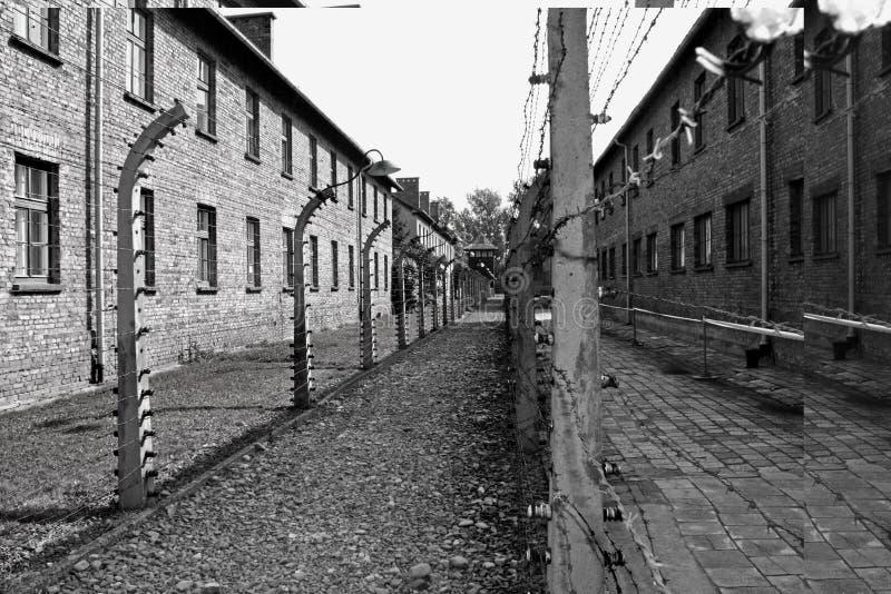 Auschwitz foto de archivo libre de regalías