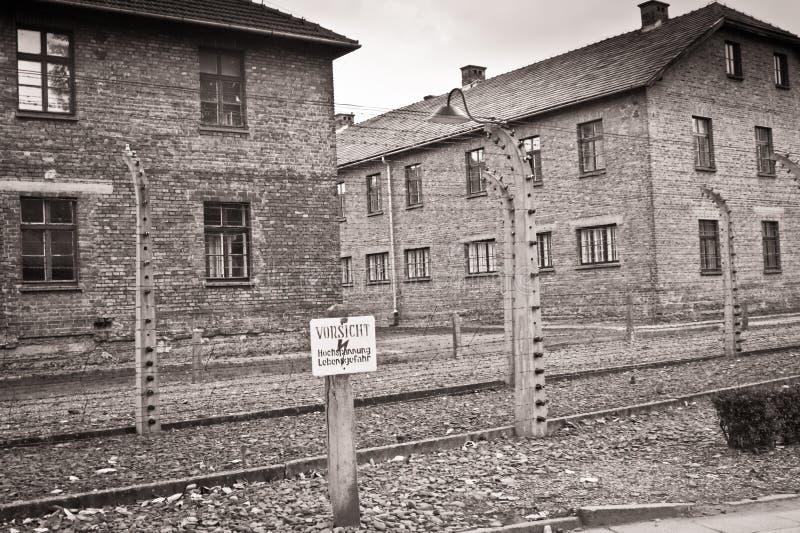 Auschwitz fotografie stock libere da diritti