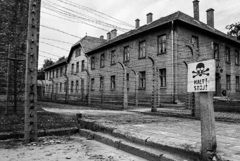 Auschwitz royaltyfri foto
