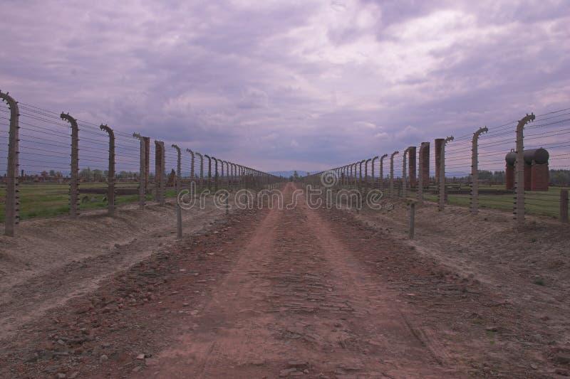 Auschwitz royalty-vrije stock foto's